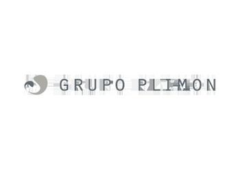 grupo plimon