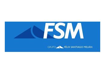 Grupo FSM